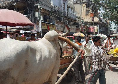 Chaotic Old Delhi