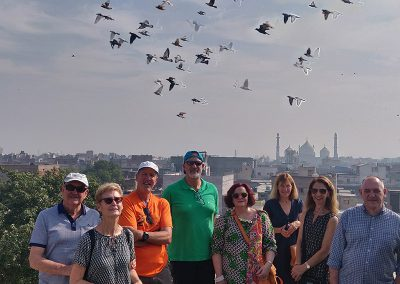 Skyline of Old Delhi